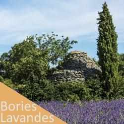 Excursions guidés - Luberon Tour